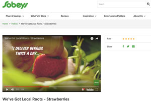 Case Studies : Website screenshot - Sobeys